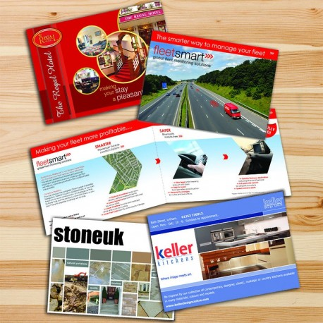 500 Extended Brochures